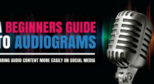 A Beginners Guide to Audiograms1