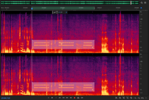 Spectral Analysis Adobe Audition