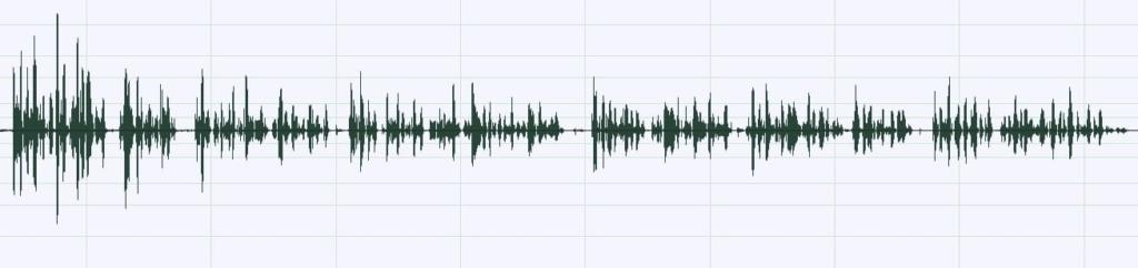 waveform - podcast jargon