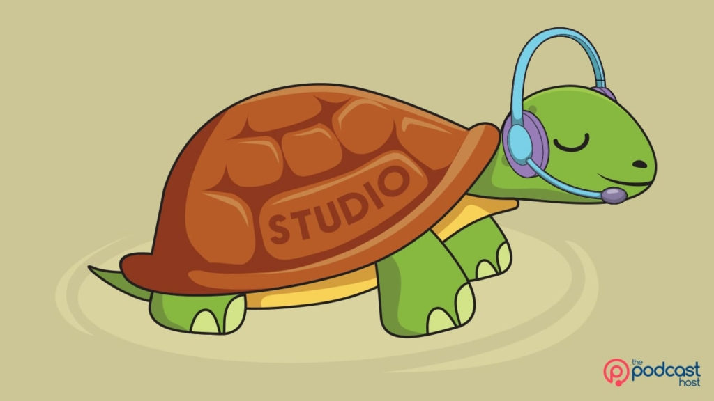 tortoise doing a live podcast from her home studio