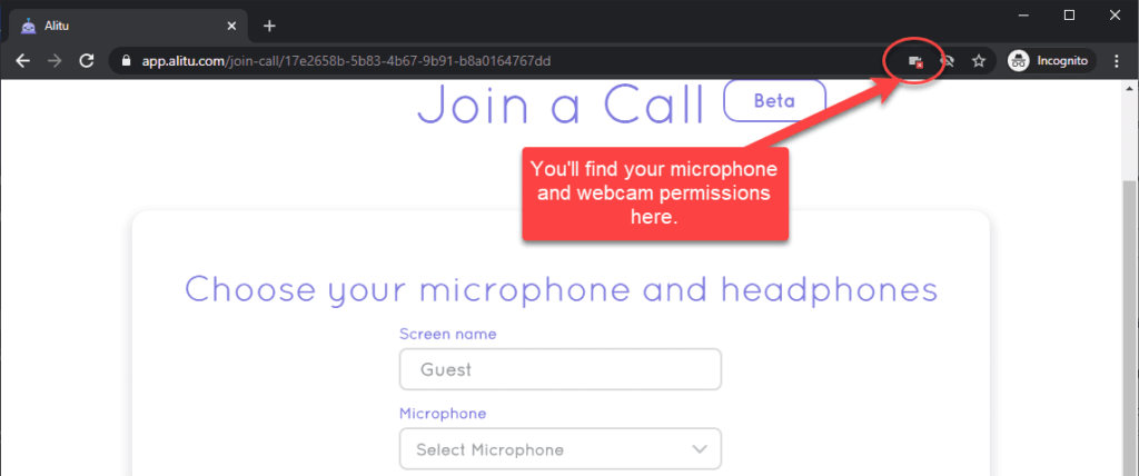 microphone permissions in the browser