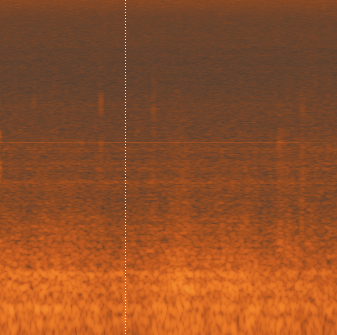 A spectrogram of room tone using iZotope RX Editor to analyze frequency content. Shure MV7 review